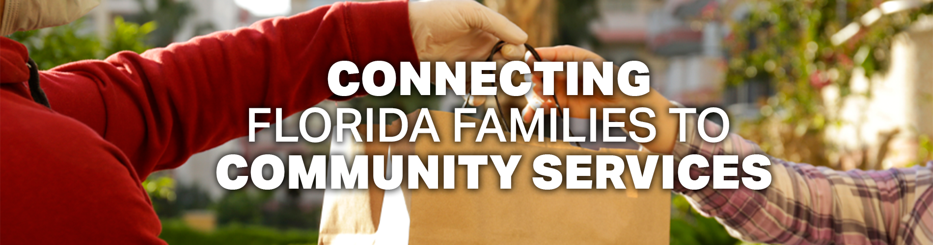 Connecting Florida Families to Community Services.  Image of person handing out food